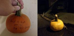 pumpkin_zeek